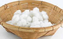 Serviette coton humide